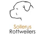 Sollerus Rottweilers - Rottweiler Breeder - Adelaide, SA