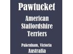 Pawtucket Amstaffs - American Staffordshire Terrier Breeder - Pakenham, Victoria