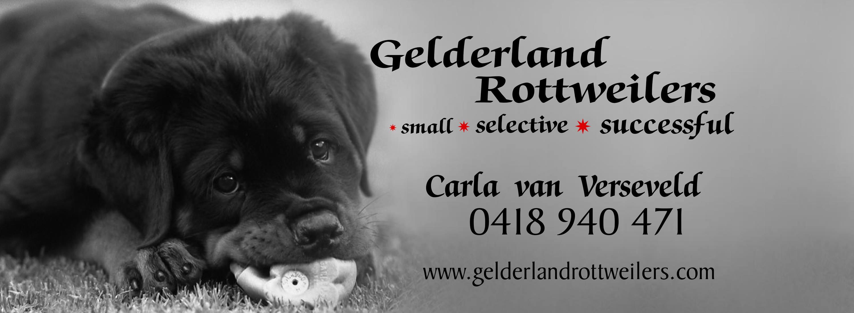 Gelderland Rottweilers