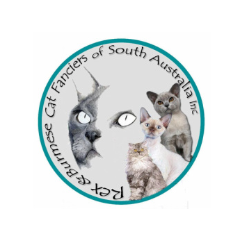 The Rex & Burmese Cat Fanciers of South Australia