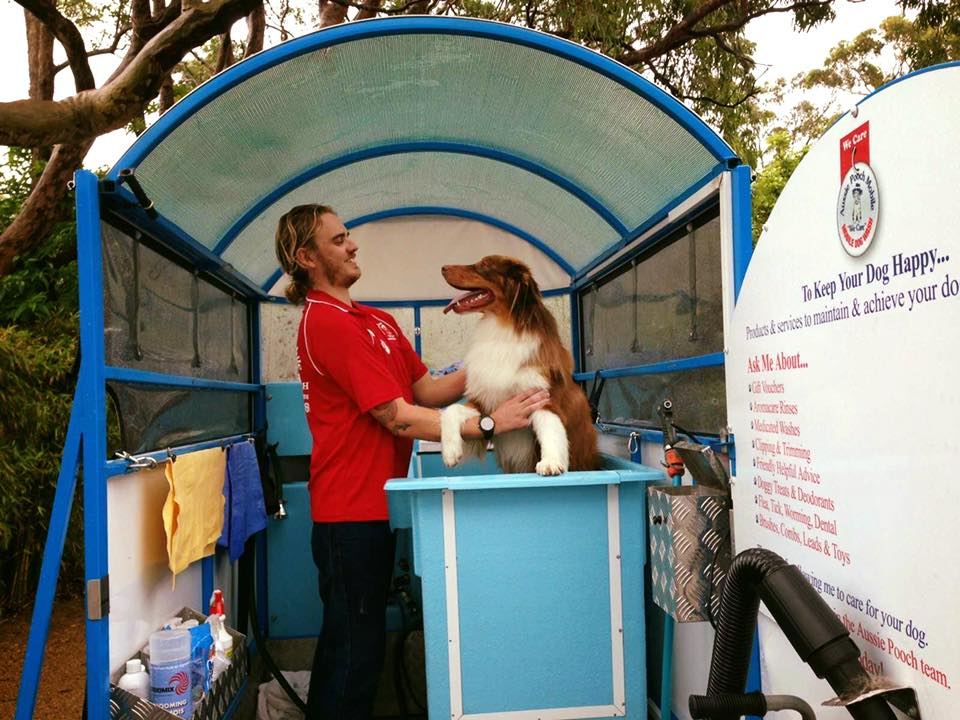 Aussie Pooch Mobile Mona Vale gallery image