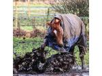 WeatherBeeta - Rugs & Coats for Horses & Dogs - Online & Stockists Australia Wide