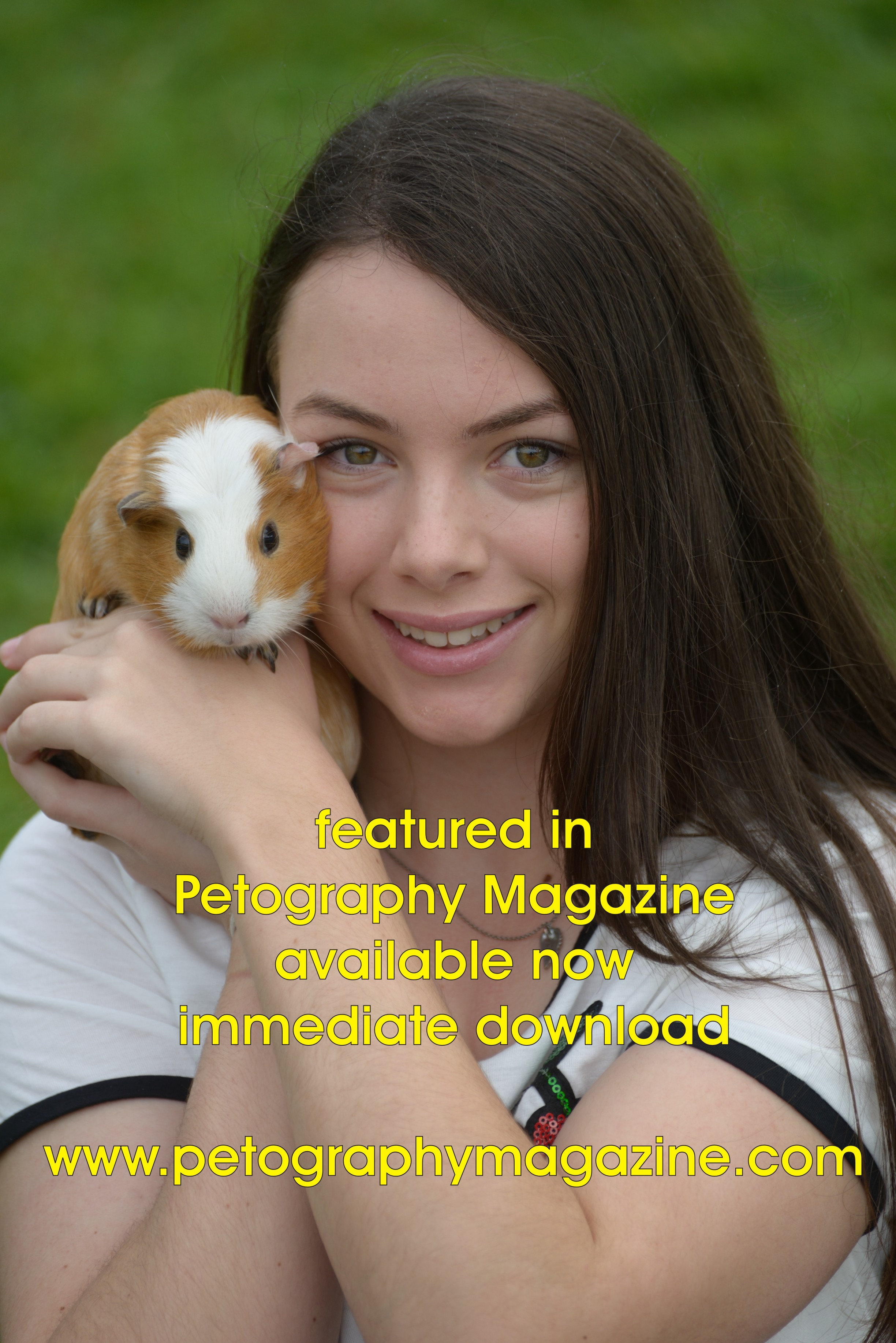 Guinea Pigs with Brewster the dog gallery image
