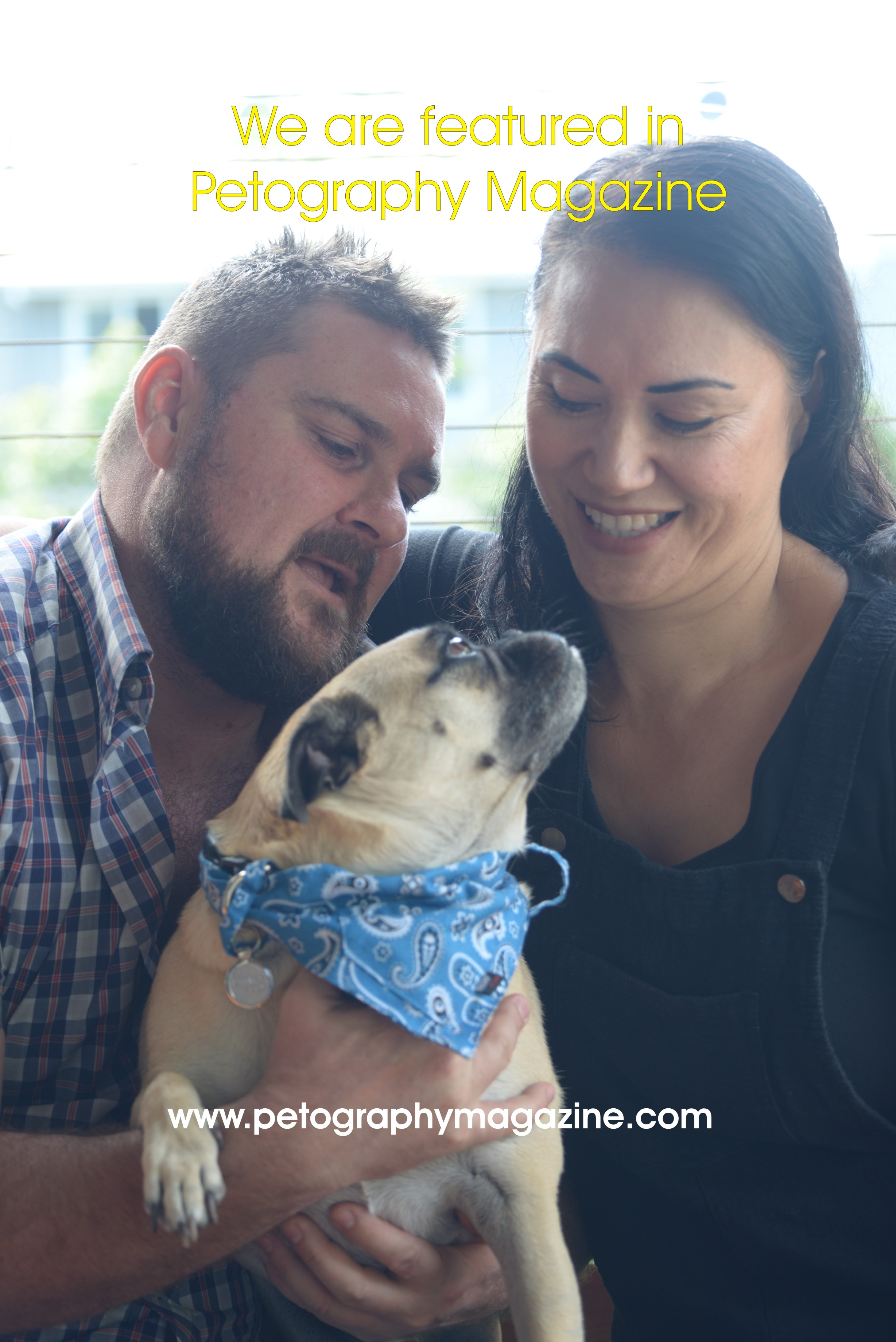 Pugsley the movie star gallery image