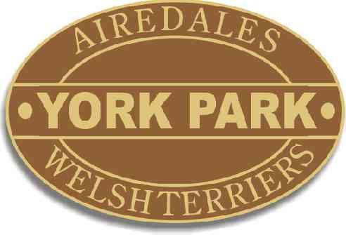 Yorkpark Logo gallery image