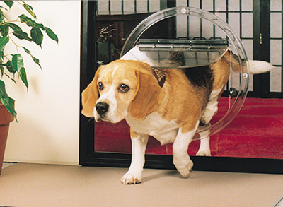 Glass Pet Doors