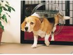 Jim's Glass : Glass Pet Doors - Cat Doors, Dog Doors - Perth, WA