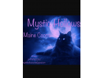 Mystic Hollows Maine Coons
