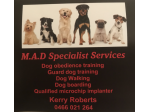 M.A.D Specialist Services: Dog Obedience, Training, Dog Walking & Boarding - Sydney