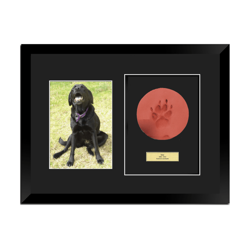 Framed Clay Paw Print / 8*10 Photo / Engraved Plaq gallery image