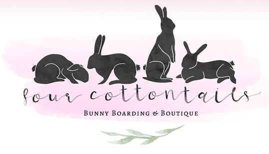 Four Cottontails
