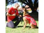 Joanchell Kennels - German Shepherd Breeder - Perth, WA