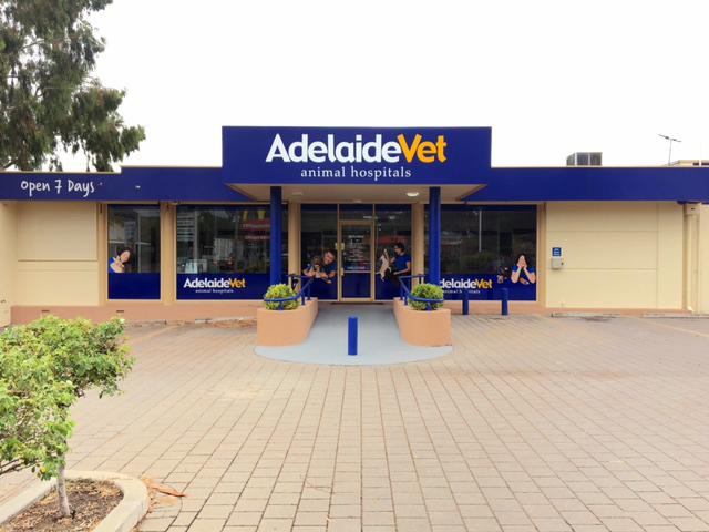 AdelaideVet Trinity Gardens