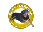 Rocky's K9 Rescue - Dog and Cat Re-homing and Adoption - Sydney, NSW