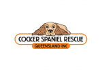 Cocker Spaniel Rescue - Foster, Re-homing and Adoption - South East QLD