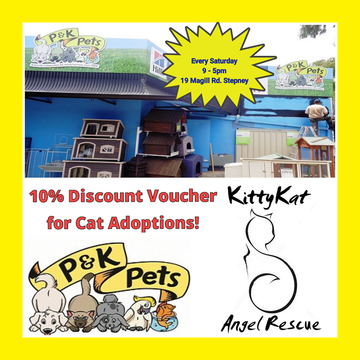 Adoption Days @ P and K Pets gallery image