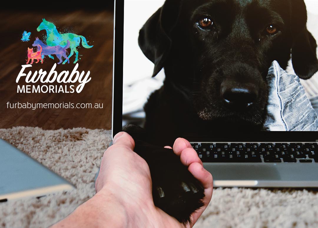 Video Pet Memorials Australia