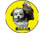 RADAR Riverina and District Animal Rescue - Foster and Adoption - Narrandera, NSW