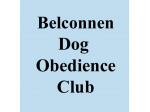 Belconnen Dog Obedience Club