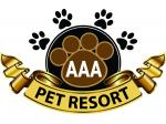AAA Pet Resort - Dog and Cat Boarding, Day Care, Pet Taxi Service - Gold Coast, QLD