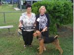 Bristolian Airedale Terrier Breeder - South Kolan, QLD