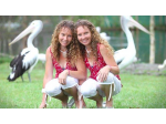 Twinnies Pelican and Seabird Rescue - Landsborough, QLD