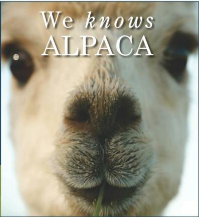 We Know Alpacas!!!  gallery image