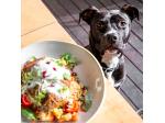 COOH Alexandria - Dog Friendly Cafe - Alexandria, Sydney, NSW