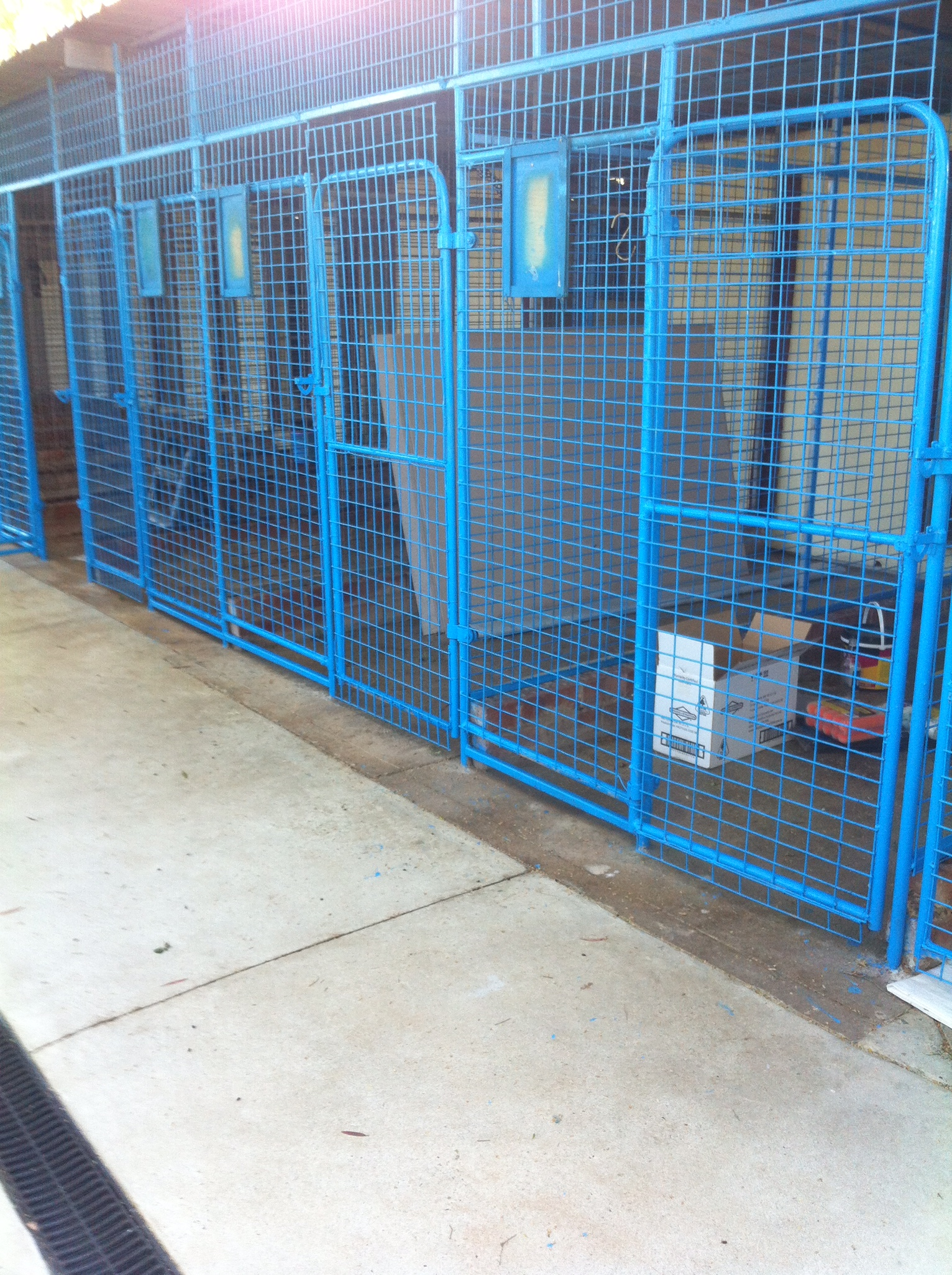 Small dog kennel block gallery image