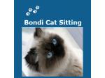 Bondi Cat Sitting - Cat sitter, Pet minding - Bondi