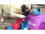 Waggly Club - All Natural Dog Treats & Toys