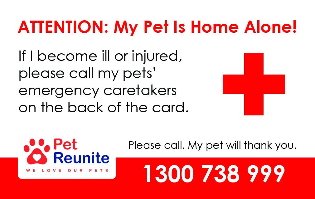 Home Alone Pets card gallery image