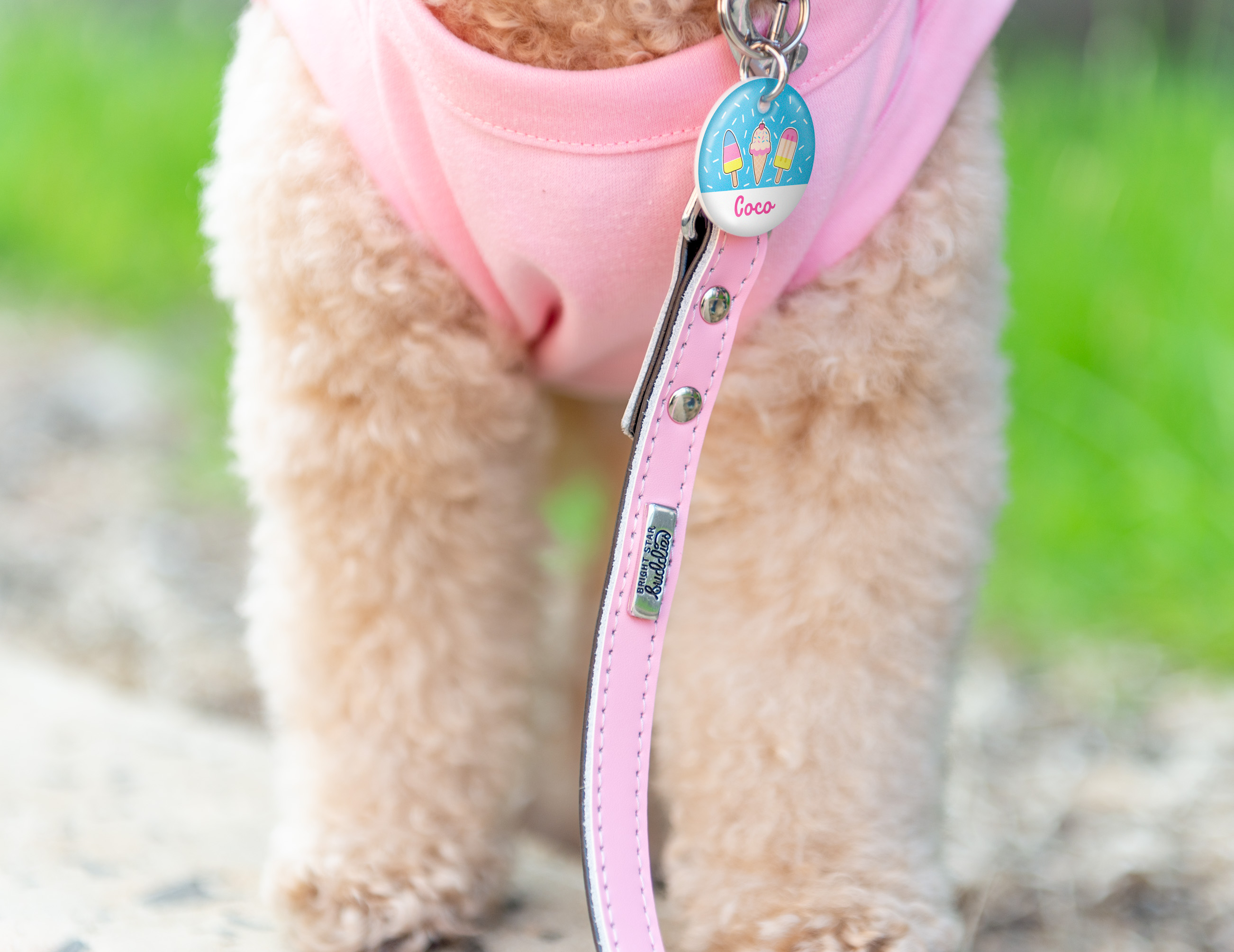 Dog Leash & Dog Tag gallery image