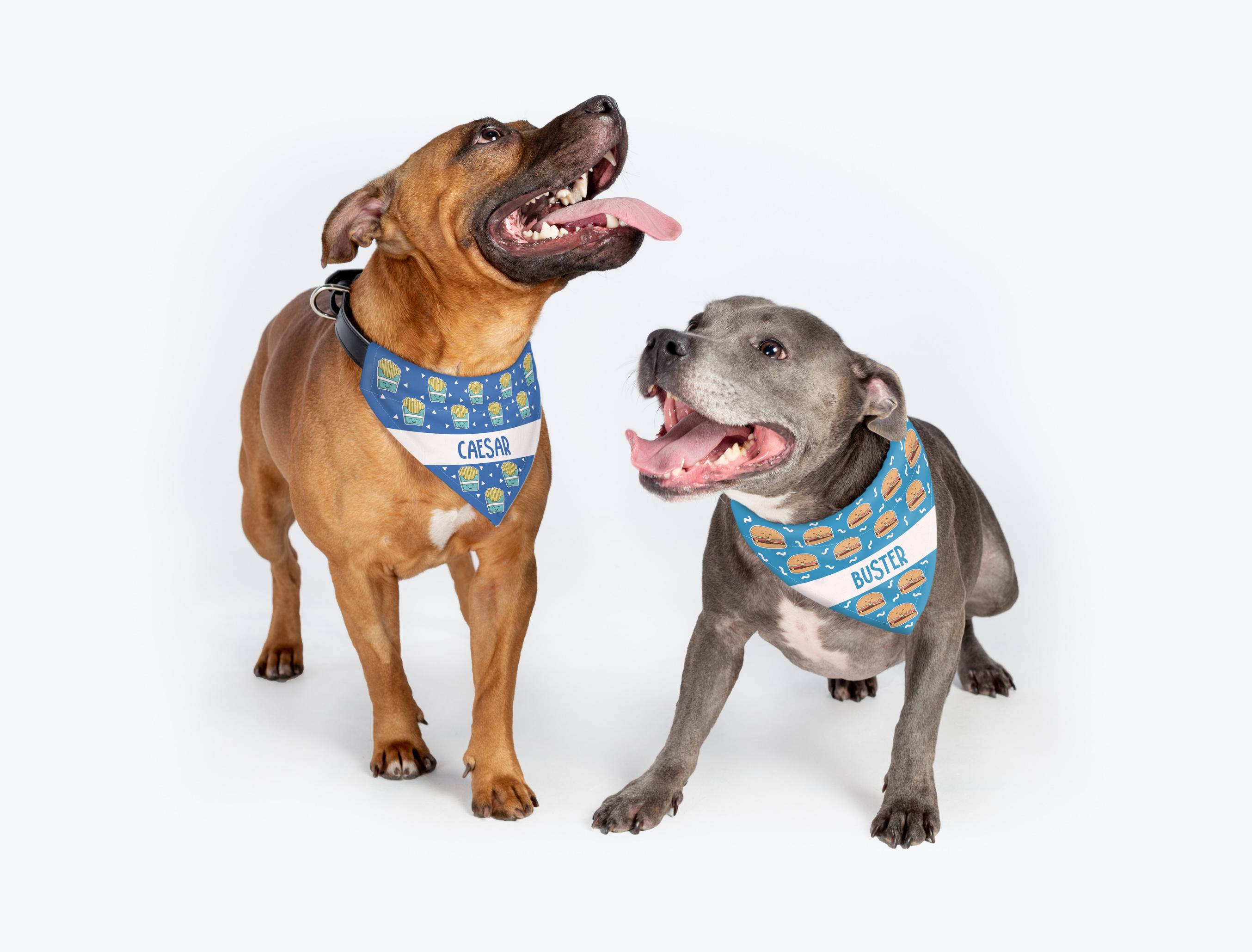 Dog Bandanas gallery image