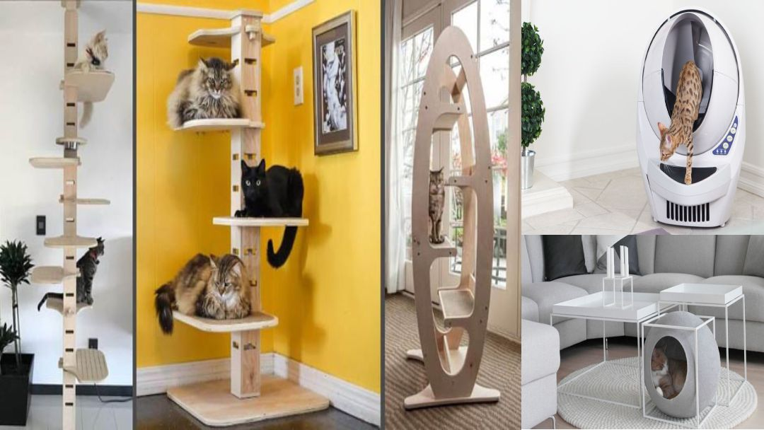 Cat supplies gallery image