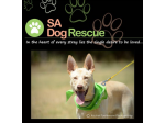 SA Dog Rescue - Dog Rescue & Adoption - South Australia