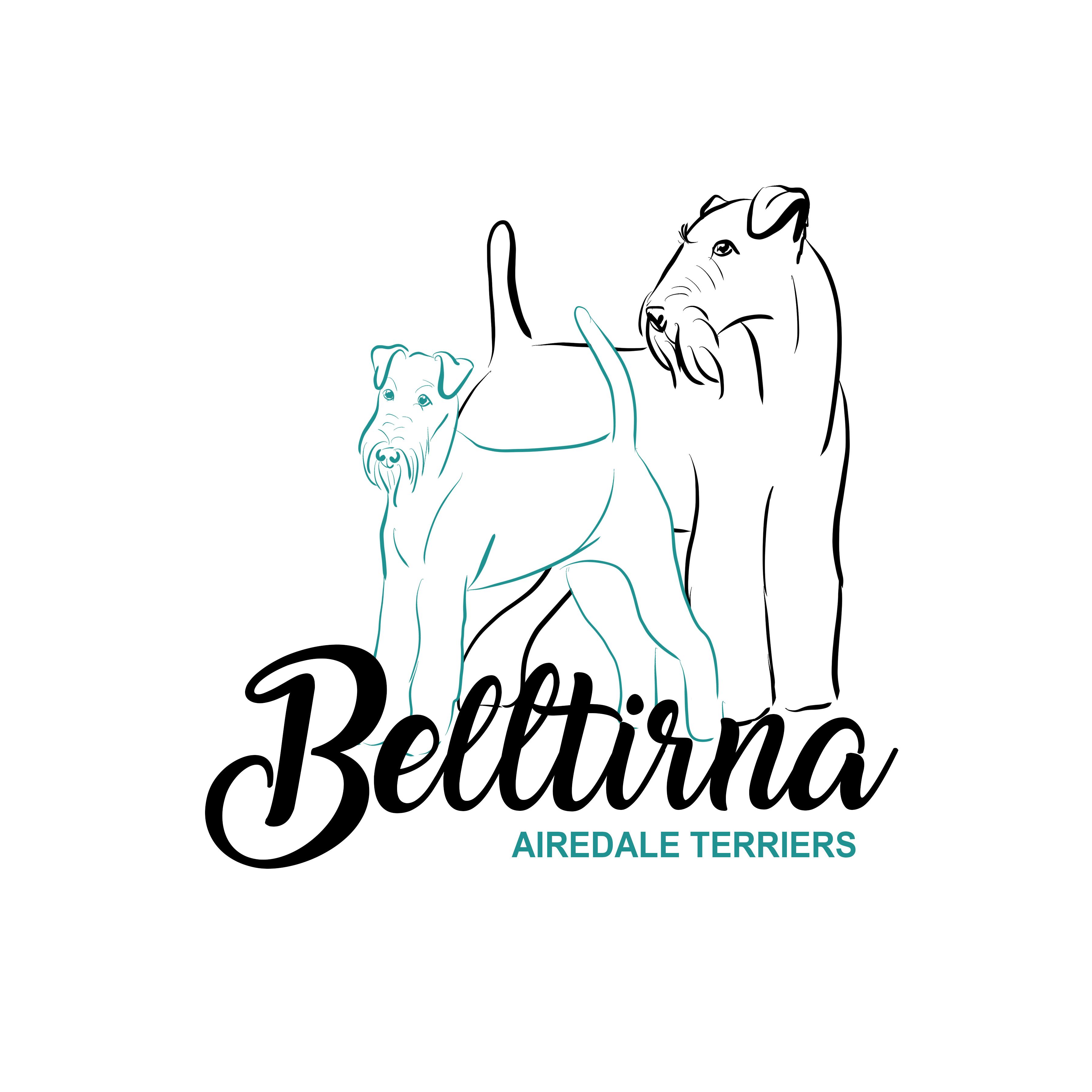 Belltirna Logo gallery image