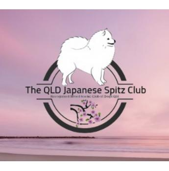 THE QLD JAPANESE SPITZ CLUB