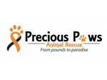 Precious Paws Animal Rescue - Dog Rescue