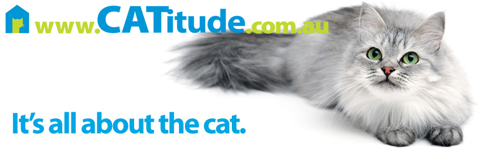 CATitude - it's all about the cat
