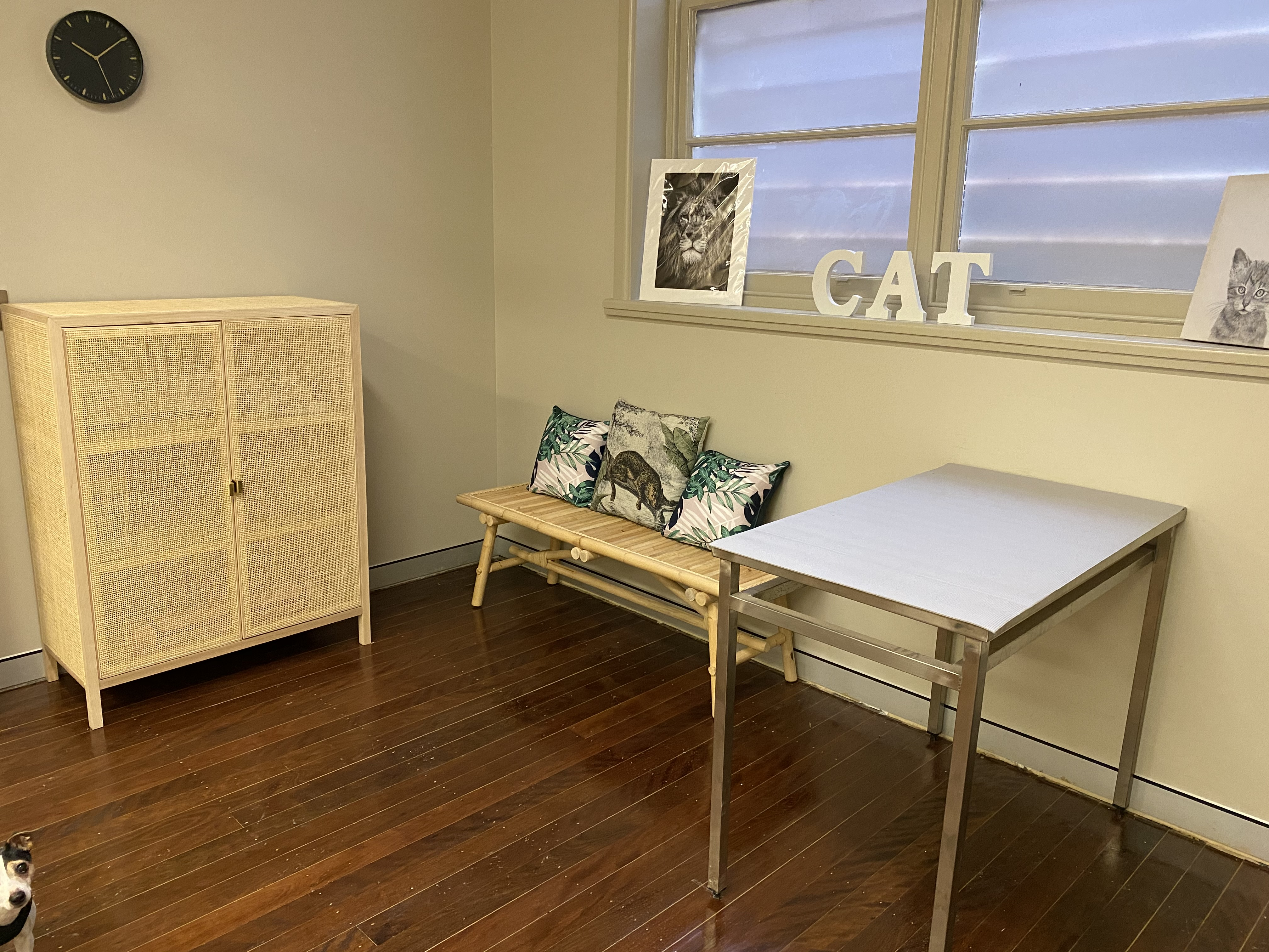 Feline Consultation Room gallery image