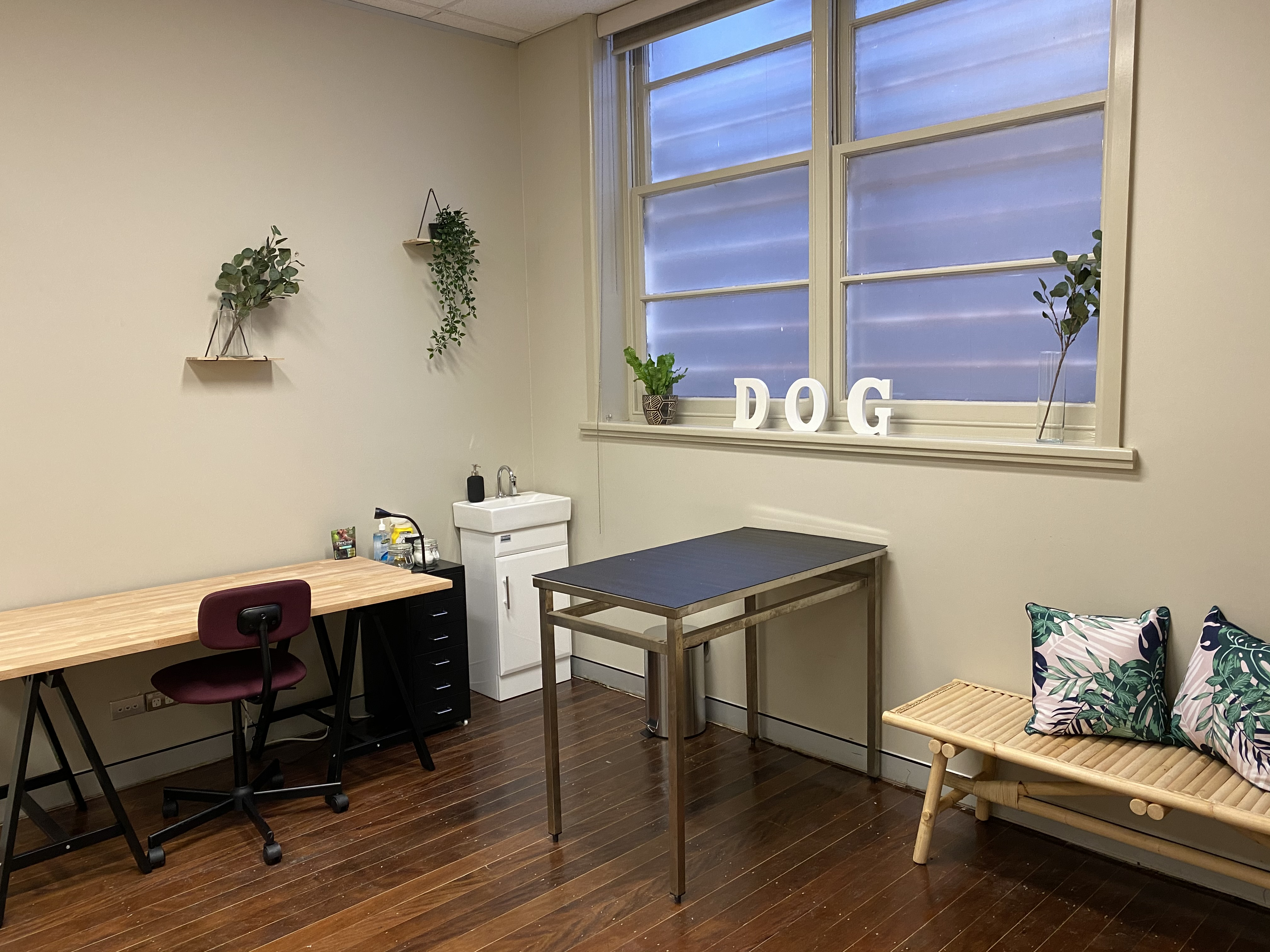Canine Consultation Room gallery image