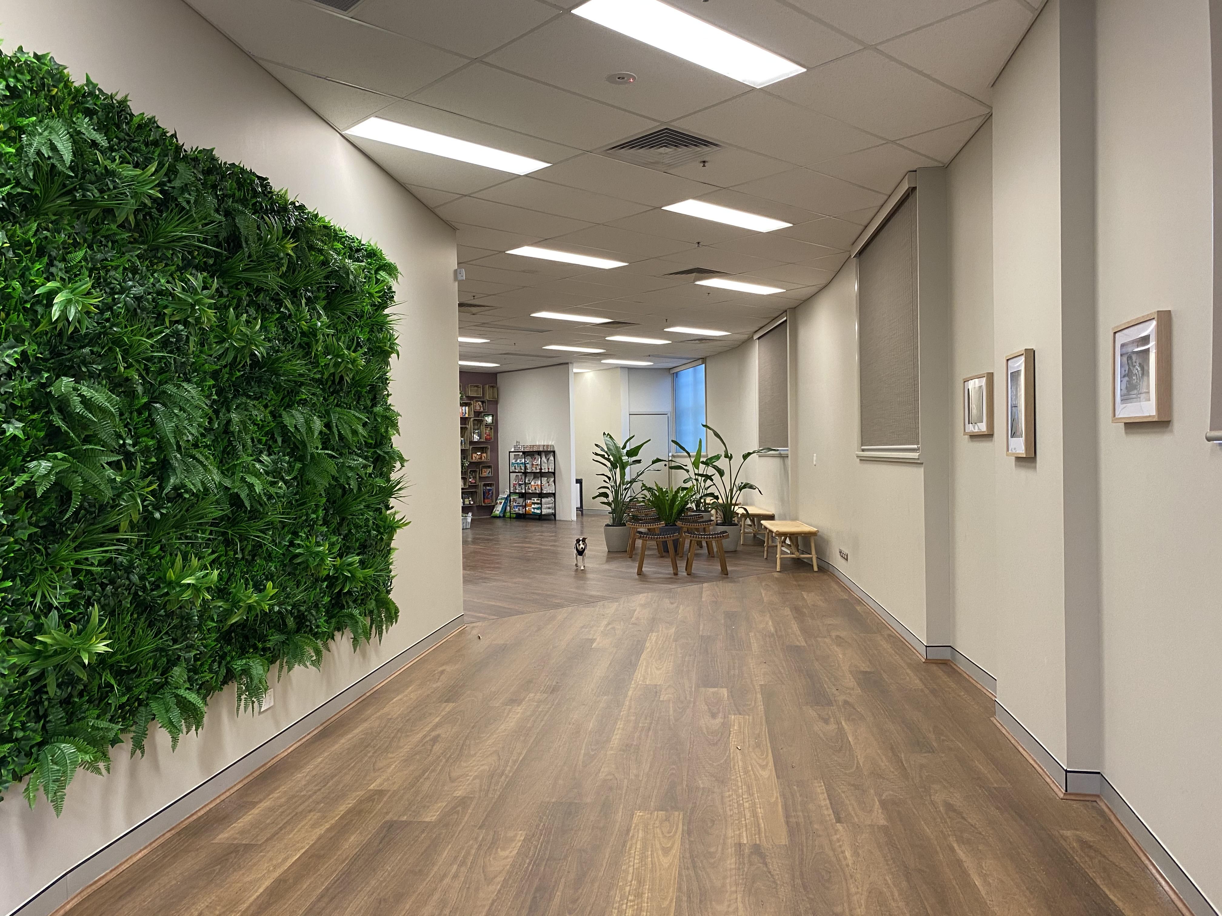 Hospital entrance gallery image