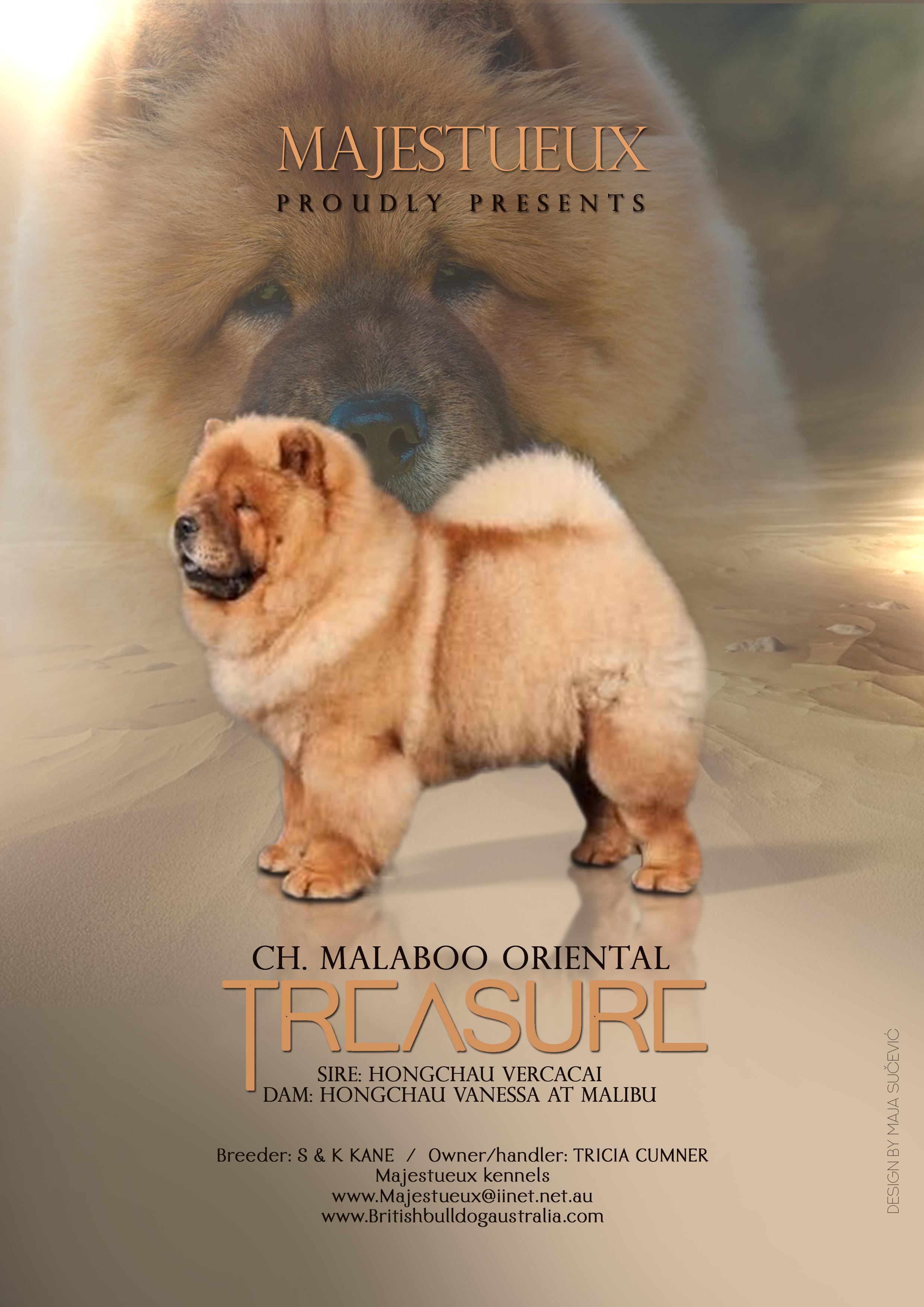 Ch. Malaboo Orienal Treasure gallery image