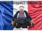 Preciousbull - French Bulldog Breeder -  Lewiston, SA