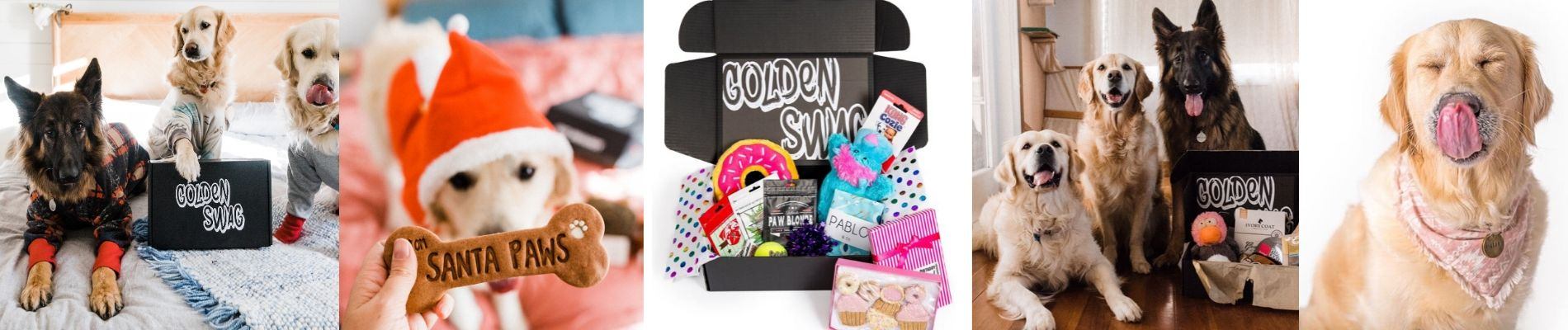 Themed Gift Box for Dogs   Surprise Gifts   Golden gallery image