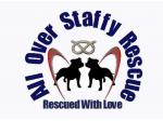 All Over Staffy Rescue - Northern Suburbs Melbourne ,VIC