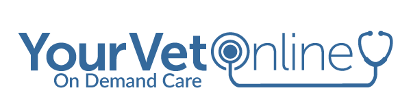 Your Vet Online - On Demand Care