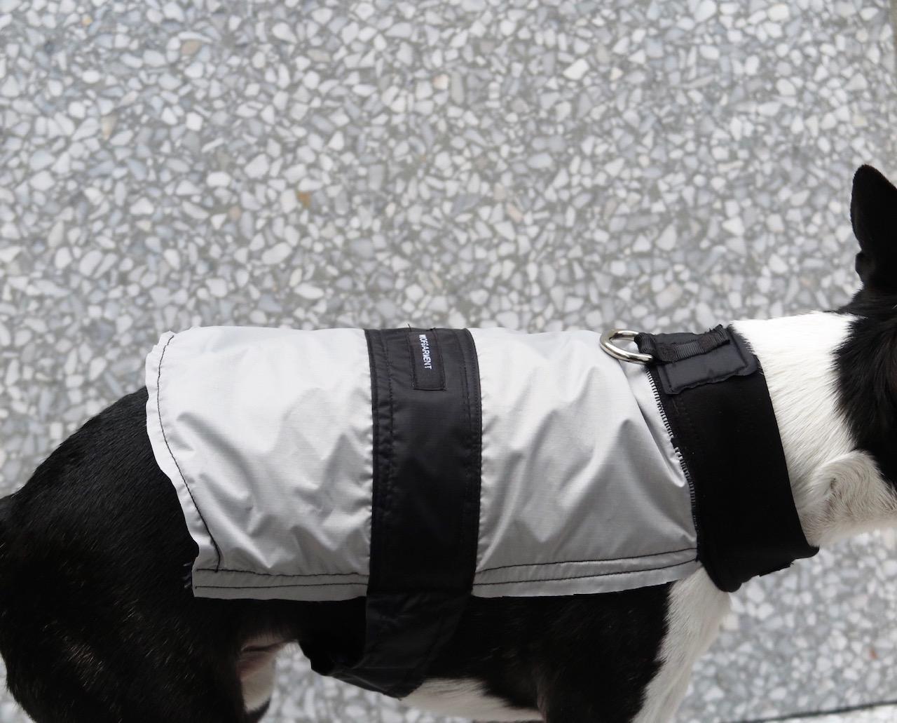 Grey Dog Jacket gallery image