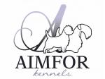 Aimfor Terriers -  Sealyham & Cairn Terrier Breeder, Groomer - Bayswater Nth, VIC